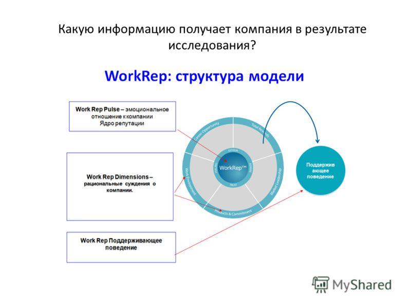 Какую информацию получает компания в результате исследования?