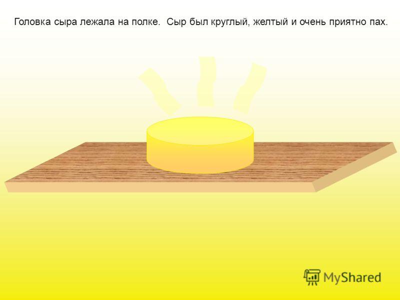 Всем известно, что мышки очень любят сыр. Сыр им сниться даже во сне. Запах сыра мышки способны учуять на большом расстоянии Наверно, поэтому, сыр кладут в мышеловки