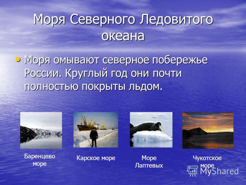 Моря Северного Ледовитого океана Моря омывают северное побережье России. Круглый год они почти полностью покрыты льдом. Моря омывают северное побережье России. Круглый год они почти полностью покрыты льдом. Баренцево море Карское мореМоре Лаптевых Чу