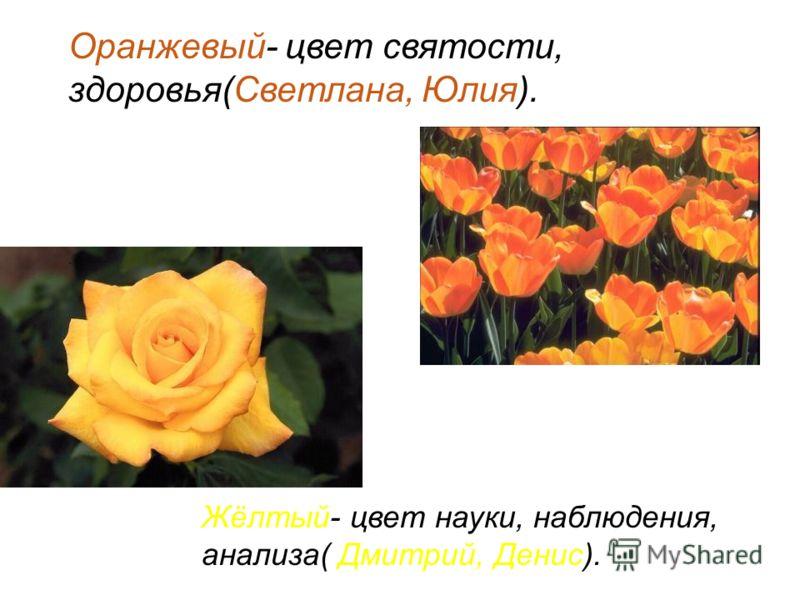Оранжевый- цвет святости, здоровья(Светлана, Юлия). Жёлтый- цвет науки, наблюдения, анализа( Дмитрий, Денис).