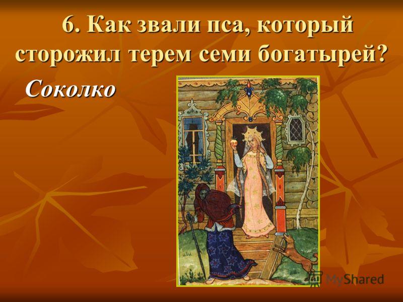 6. Как звали пса, который сторожил терем семи богатырей? 6. Как звали пса, который сторожил терем семи богатырей? Соколко