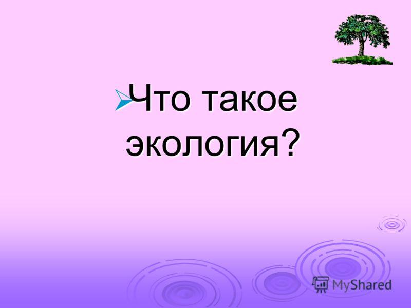 Что такое экология? Что такое экология?