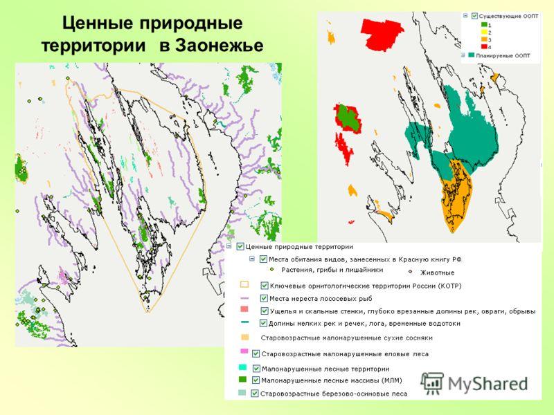 Ценные природные территории в Заонежье
