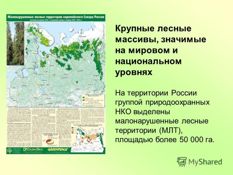 Крупные лесные массивы, значимые на мировом и национальном уровнях На территории России группой природоохранных НКО выделены малонарушенные лесные территории (МЛТ), площадью более 50 000 га.