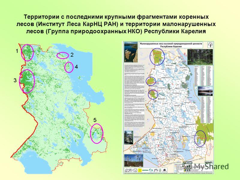 Территории с последними крупными фрагментами коренных лесов (Институт Леса КарНЦ РАН) и территории малонарушенных лесов (Группа природоохранных НКО) Республики Карелия