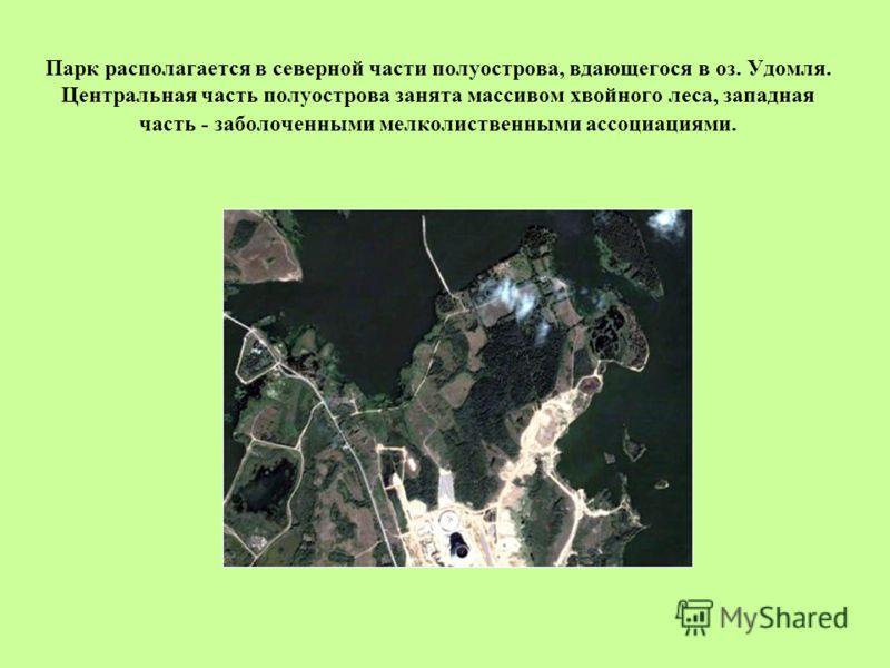 Парк располагается в северной части полуострова, вдающегося в оз. Удомля. Центральная часть полуострова занята массивом хвойного леса, западная часть - заболоченными мелколиственными ассоциациями.