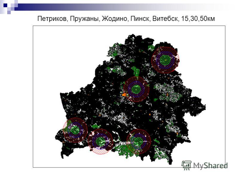 Петриков, Пружаны, Жодино, Пинск, Витебск, 15,30,50км
