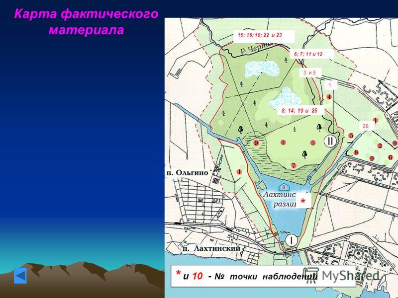 Карта фактического материала 15; 16; 18; 22 и 23 6; 7; 11 и 12 3 и 5 1 28 8; 14; 19 и 25 * * и 10 - точки наблюдений