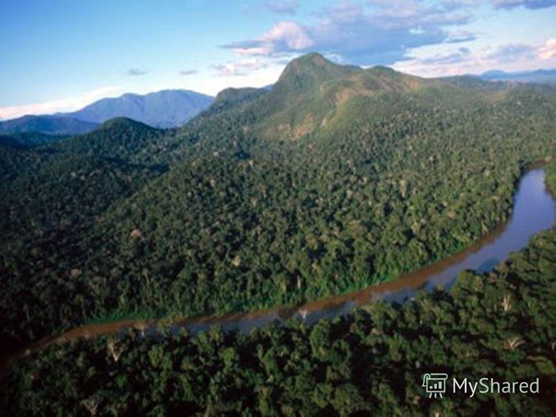 Амазонка Річка Реферат