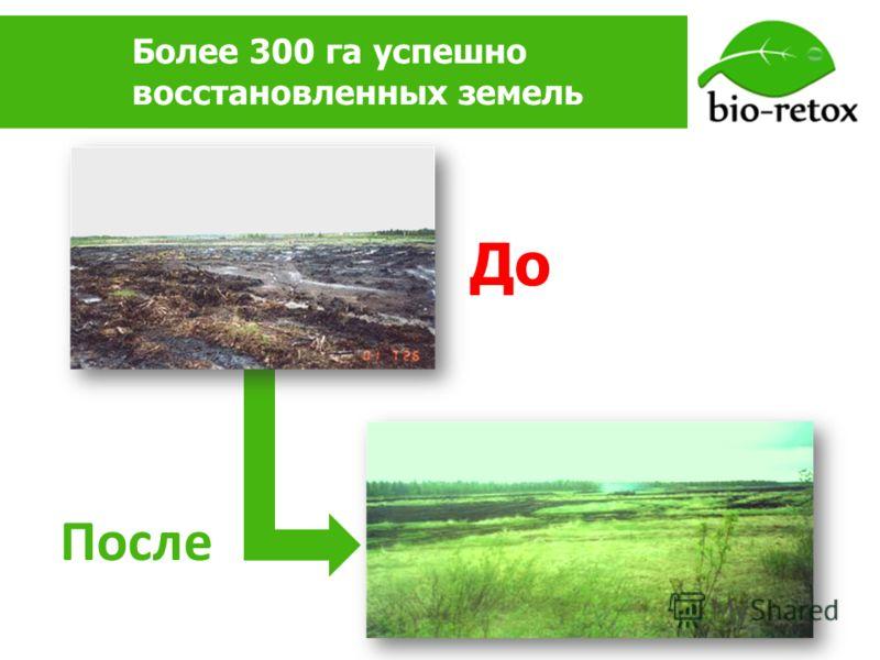 Более 300 га успешно восстановленных земель До После