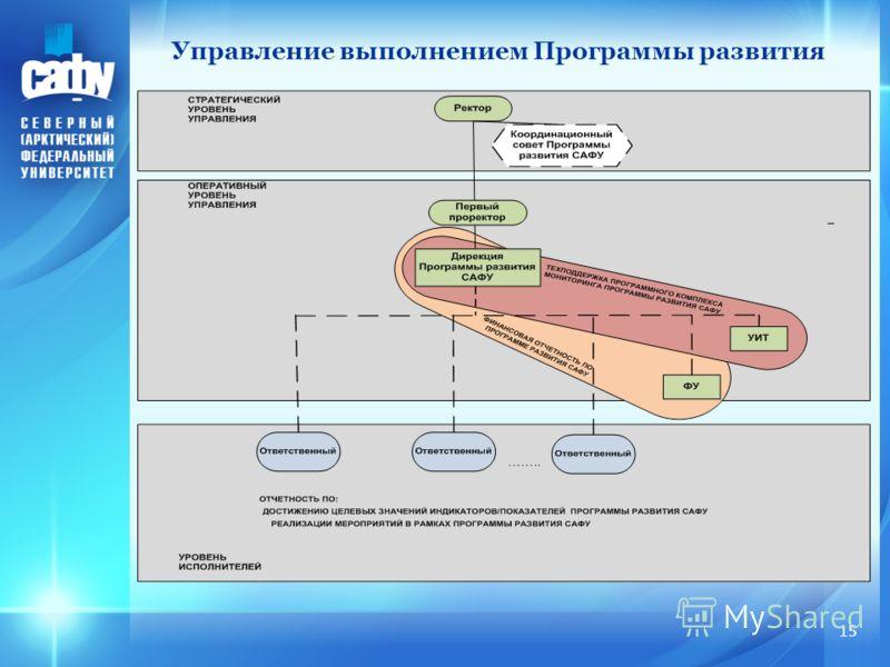Управление выполнением Программы развития 15