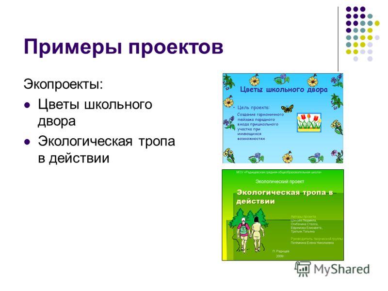 Примеры проектов Экопроекты: Цветы школьного двора Экологическая тропа в действии