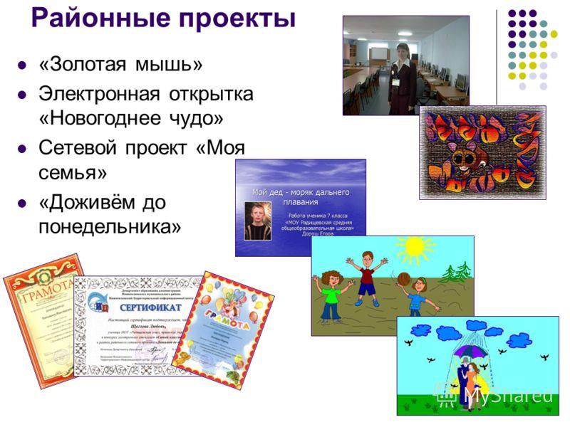 Районные проекты «Золотая мышь» Электронная открытка «Новогоднее чудо» Сетевой проект «Моя семья» «Доживём до понедельника»