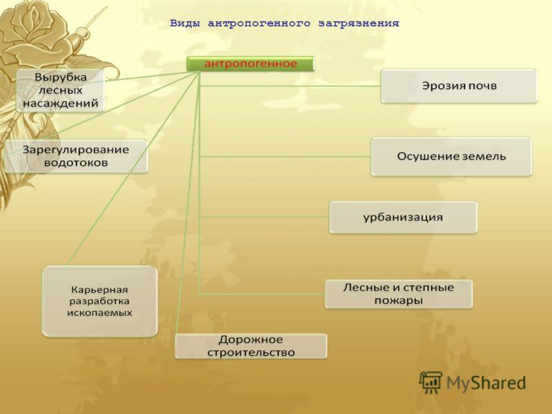 Виды антропогенного загрязнения