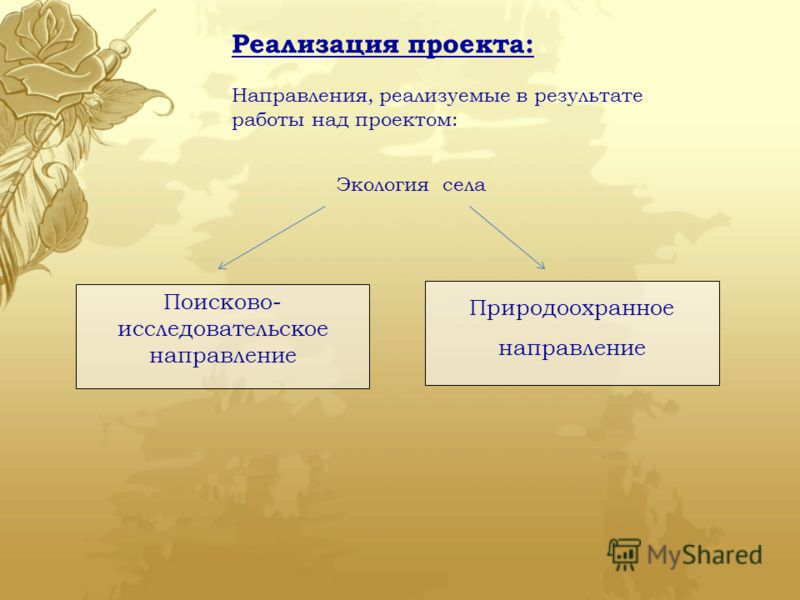 Реализация проекта: Направления, реализуемые в результате работы над проектом: Экология села Поисково- исследовательское направление Природоохранное направление