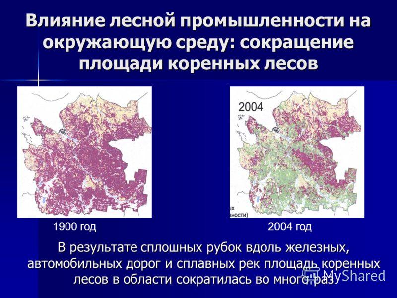 Влияние лесной промышленности на окружающую среду: сокращение площади коренных лесов В результате сплошных рубок вдоль железных, автомобильных дорог и сплавных рек площадь коренных лесов в области сократилась во много раз 1900 год2004 год