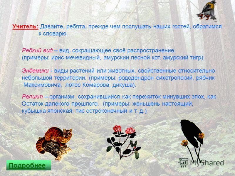 Учитель: Давайте, ребята, прежде чем послушать наших гостей, обратимся к словарю. Редкий вид – вид, сокращающее своё распространение. (примеры: ирис-мечевидный, амурский лесной кот, амурский тигр) Эндемики - виды растений или животных, свойственные о