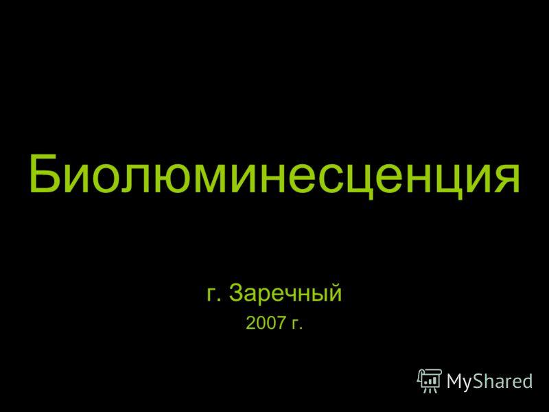 Биолюминесценция г. Заречный 2007 г.