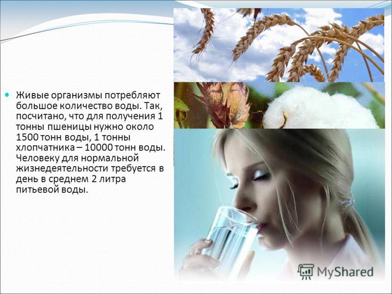 Живые организмы потребляют большое количество воды. Так, посчитано, что для получения 1 тонны пшеницы нужно около 1500 тонн воды, 1 тонны хлопчатника – 10000 тонн воды. Человеку для нормальной жизнедеятельности требуется в день в среднем 2 литра пить