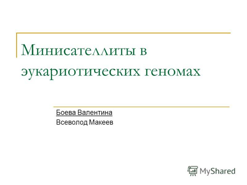 Минисателлиты в эукариотических геномах Боева Валентина Всеволод Макеев