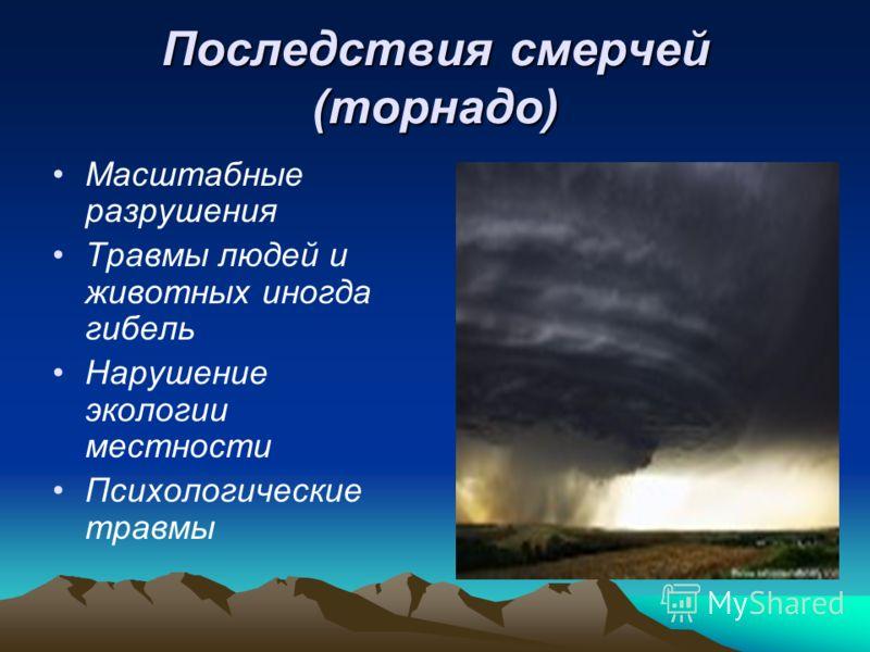 Последствия смерчей (торнадо) Масштабные разрушения Травмы людей и животных иногда гибель Нарушение экологии местности Психологические травмы