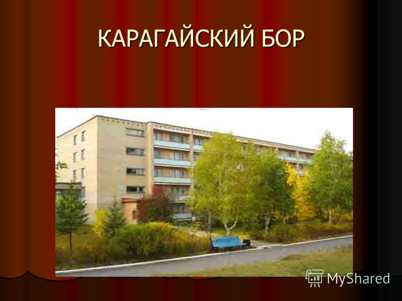 КАРАГАЙСКИЙ БОР