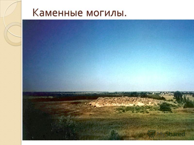 Каменные могилы. небольшой изолированный массив песчаника, размерами примерно 240 на 160 метров, состоящий из крупных каменных глыб высотой до 12 метров. находится в долине реки Молочной в Запорожской области Украины.