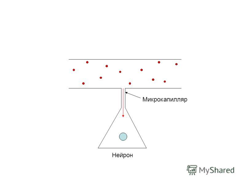 Микрокапилляр