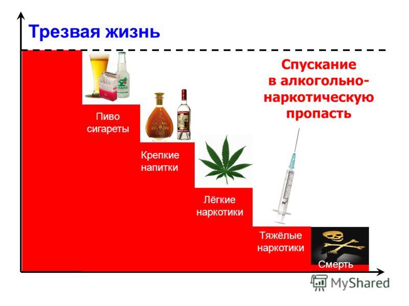 Трезвая жизнь Спускание в алкогольно- наркотическую пропасть Пиво сигареты Крепкие напитки Лёгкие наркотики Тяжёлые наркотики Смерть
