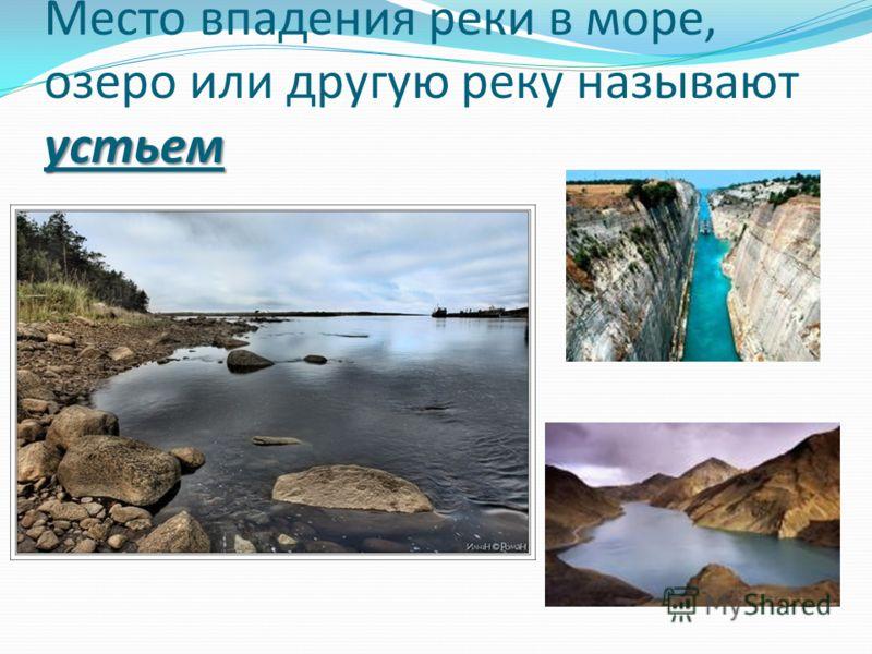 устьем Место впадения реки в море, озеро или другую реку называют устьем