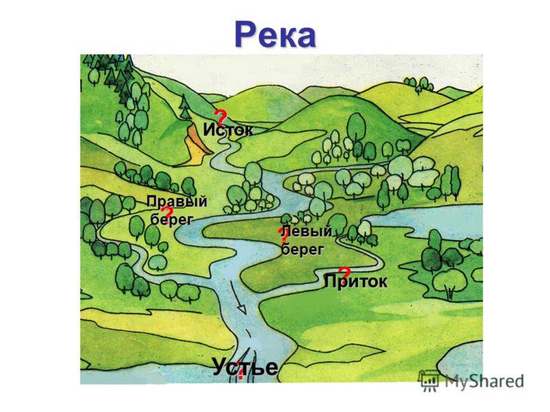 Река ? ? ? ? ? Исток Правый берег Левыйберег Приток Устье
