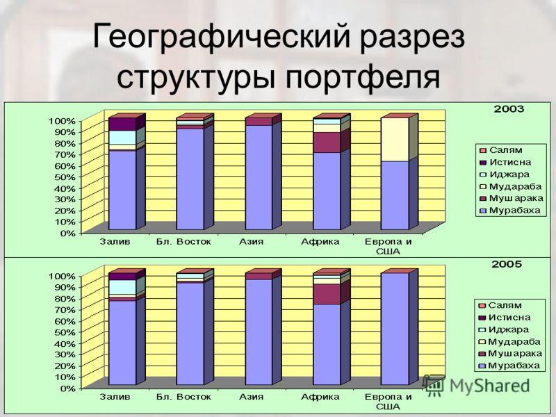 Географический разрез структуры портфеля