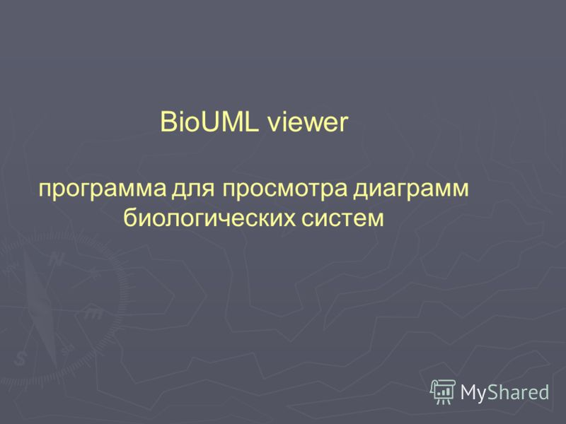 BioUML viewer программа для просмотра диаграмм биологических систем