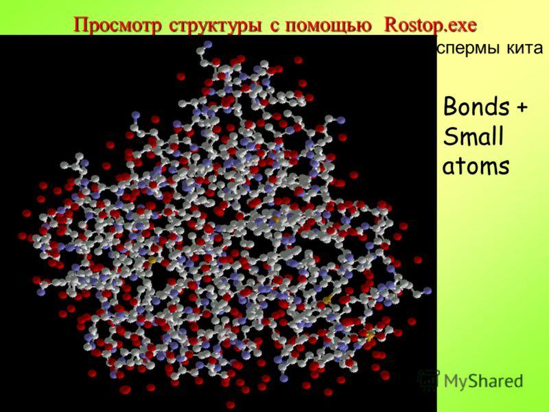 © Факультет Фундаментальной Медицины МГУ Просмотр структуры с помощью Rostop.exe Bonds + Small atoms Миоглобин из спермы кита
