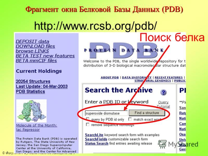 © Факультет Фундаментальной Медицины МГУ Фрагмент окна Белковой Базы Данных (PDB) http://www.rcsb.org/pdb/ Поиск белка