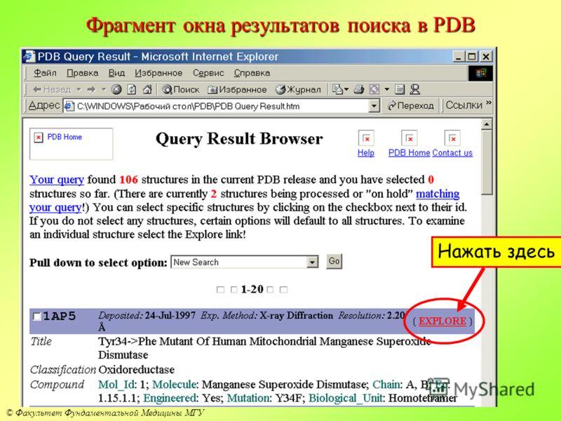 © Факультет Фундаментальной Медицины МГУ Фрагмент окна результатов поиска в PDB Нажать здесь