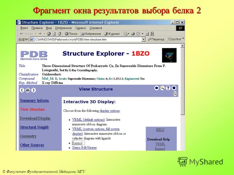 © Факультет Фундаментальной Медицины МГУ Фрагмент окна результатов выбора белка 2
