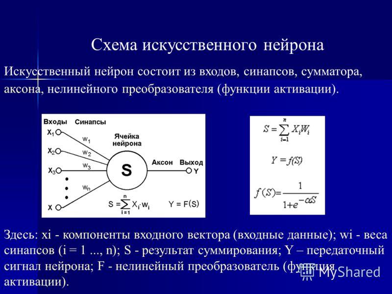 Схема биологического нейрона Рис. 2.1. Взаимосвязь биологических нейронов