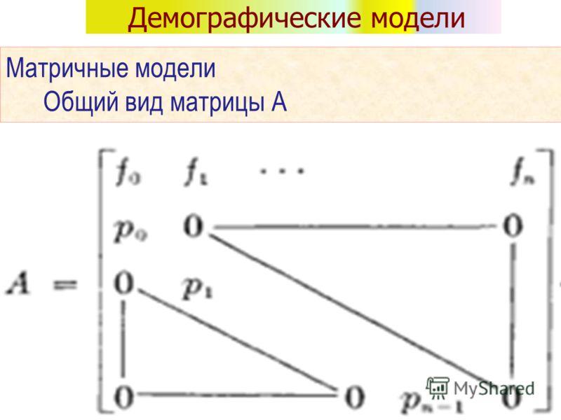Демографические модели Матричные модели Общий вид матрицы А