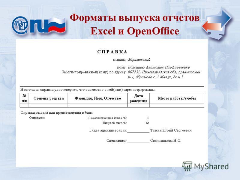 Уровень сельской администрации Форматы выпуска отчетов Excel и OpenOffice