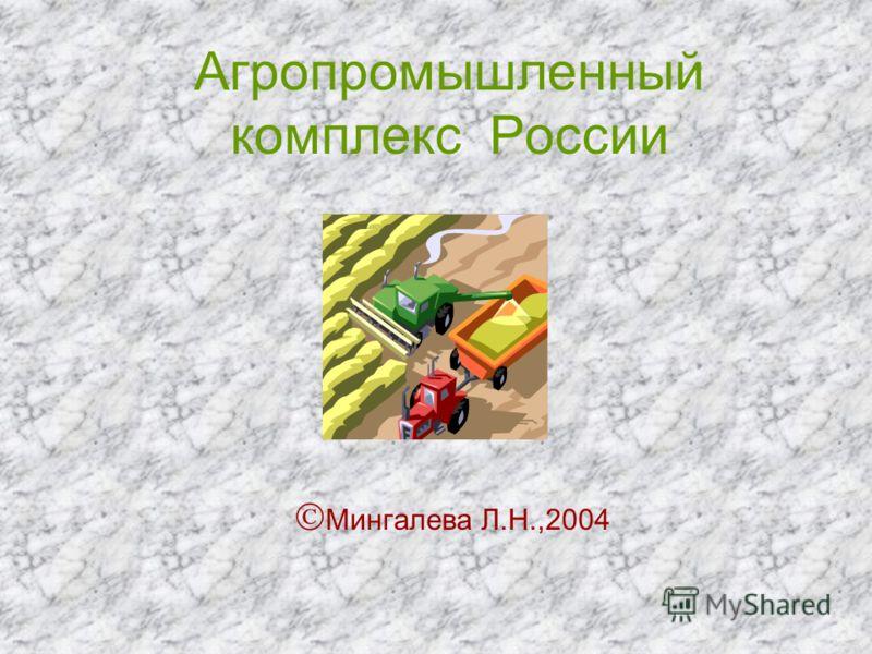 Агропромышленный комплекс России Мингалева Л.Н.,2004