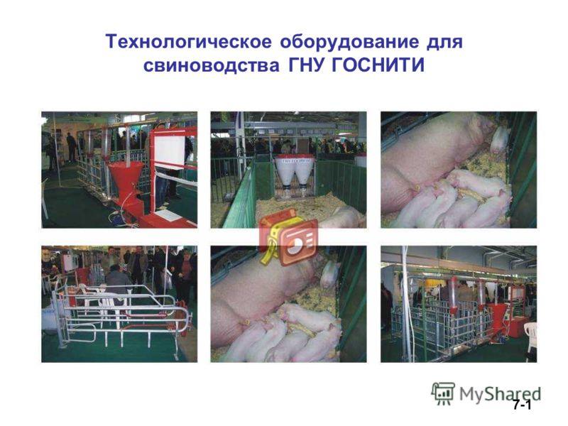 Технологическое оборудование для свиноводства ГНУ ГОСНИТИ 7-1