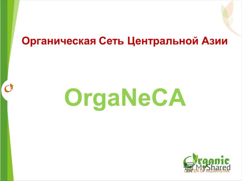Органическая Cеть Центральной Азии OrgaNeCA