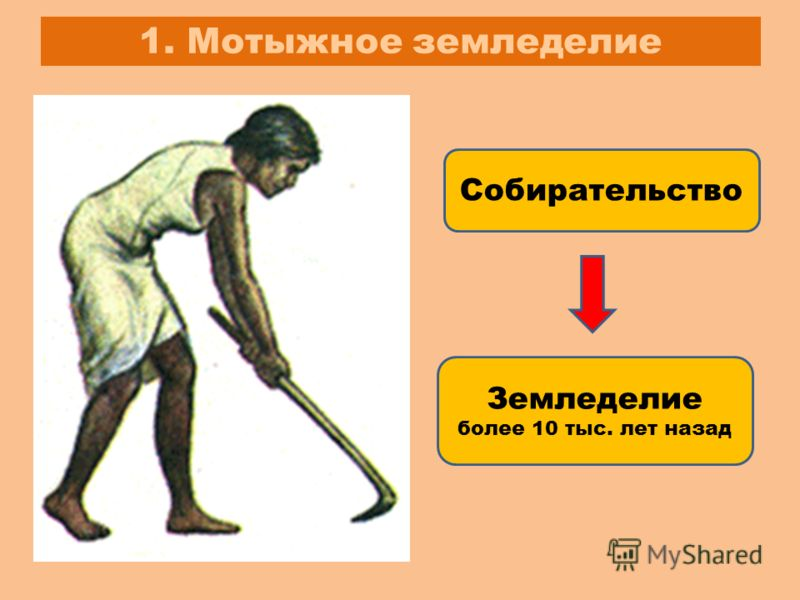 1. Мотыжное земледелие Собирательство Земледелие более 10 тыс. лет назад