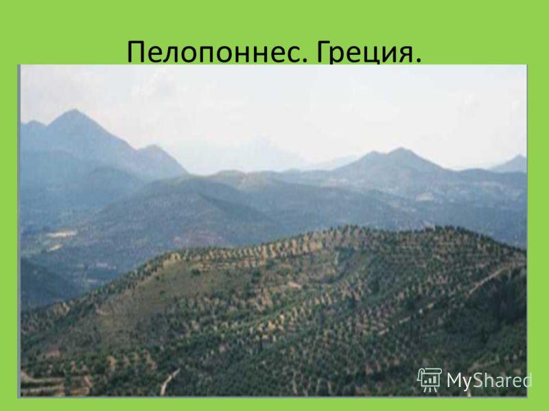 Пелопоннес. Греция.