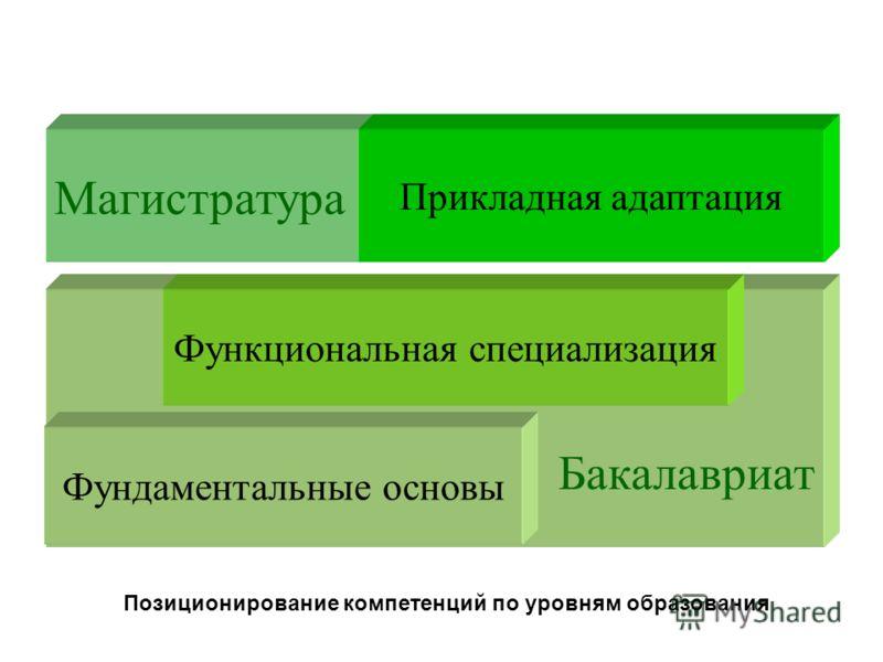 Магистратура Бакалавриат Фундаментальные основы Функциональная специализация Прикладная адаптация Позиционирование компетенций по уровням образования