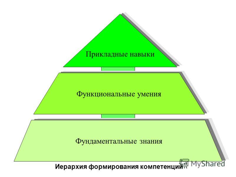 НАУЧНО ОБРАЗОВАТЕЛЬНАЯ ШКОЛА Функциональные умения Прикладные навыки Иерархия формирования компетенций Фундаментальные знания