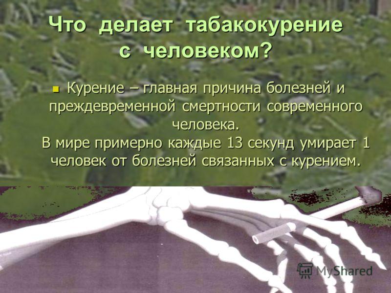 Что делает табакокурение с человеком? Курение – главная причина болезней и преждевременной смертности современного человека. В мире примерно каждые 13 секунд умирает 1 человек от болезней связанных с курением. Курение – главная причина болезней и пре