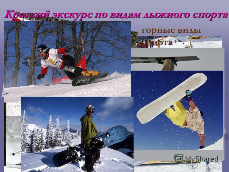 лыжные гонки Прыжки на лыжах с трамплина Сноубординг Биатлон горные виды спорта Фристайл Краткий экскурс по видам лыжного спорта