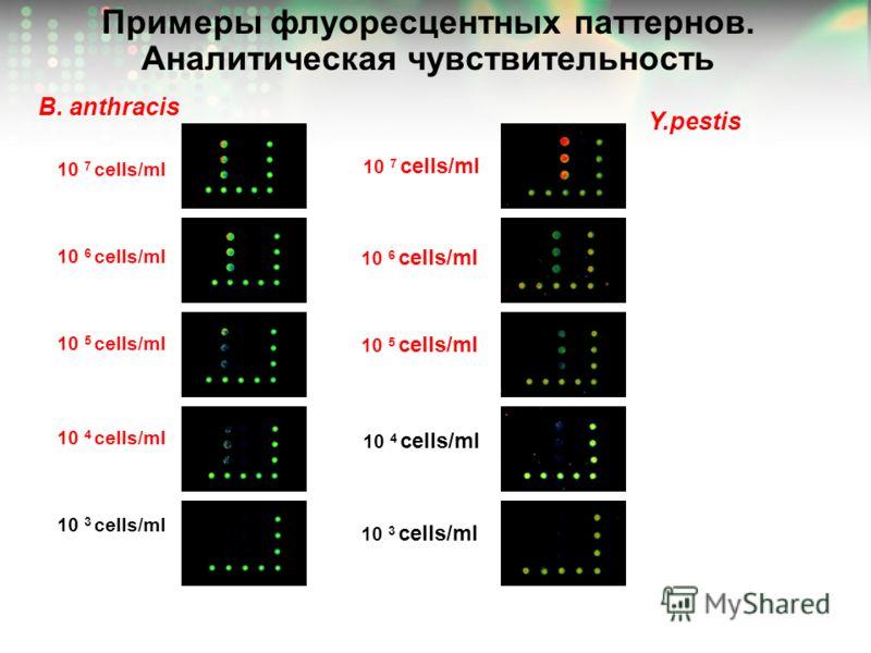 Примеры флуоресцентных паттернов. Аналитическая чувствительность Y.pestis B. anthracis 10 3 cells/ml 10 7 cells/ml 10 4 cells/ml 10 5 cells/ml 10 6 cells/ml 10 3 cells/ml 10 4 cells/ml 10 5 cells/ml 10 6 cells/ml 10 7 cells/ml